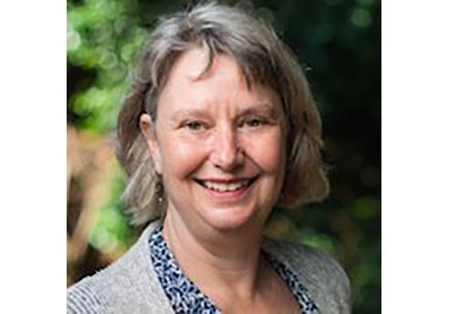 Mary Vradelis Interim Executive Director